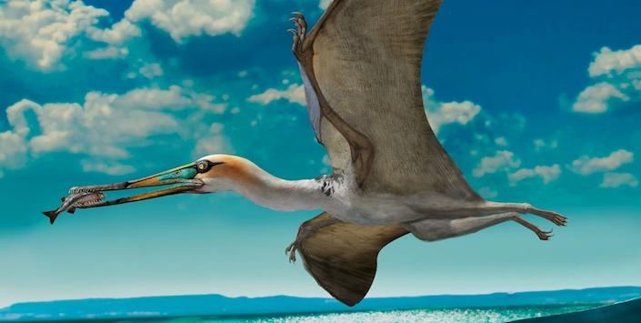 Reconstrucción un pterosaurio de China que sugiere el modo de vida de estos particulares animales | Dibujo por Zhao Chuang