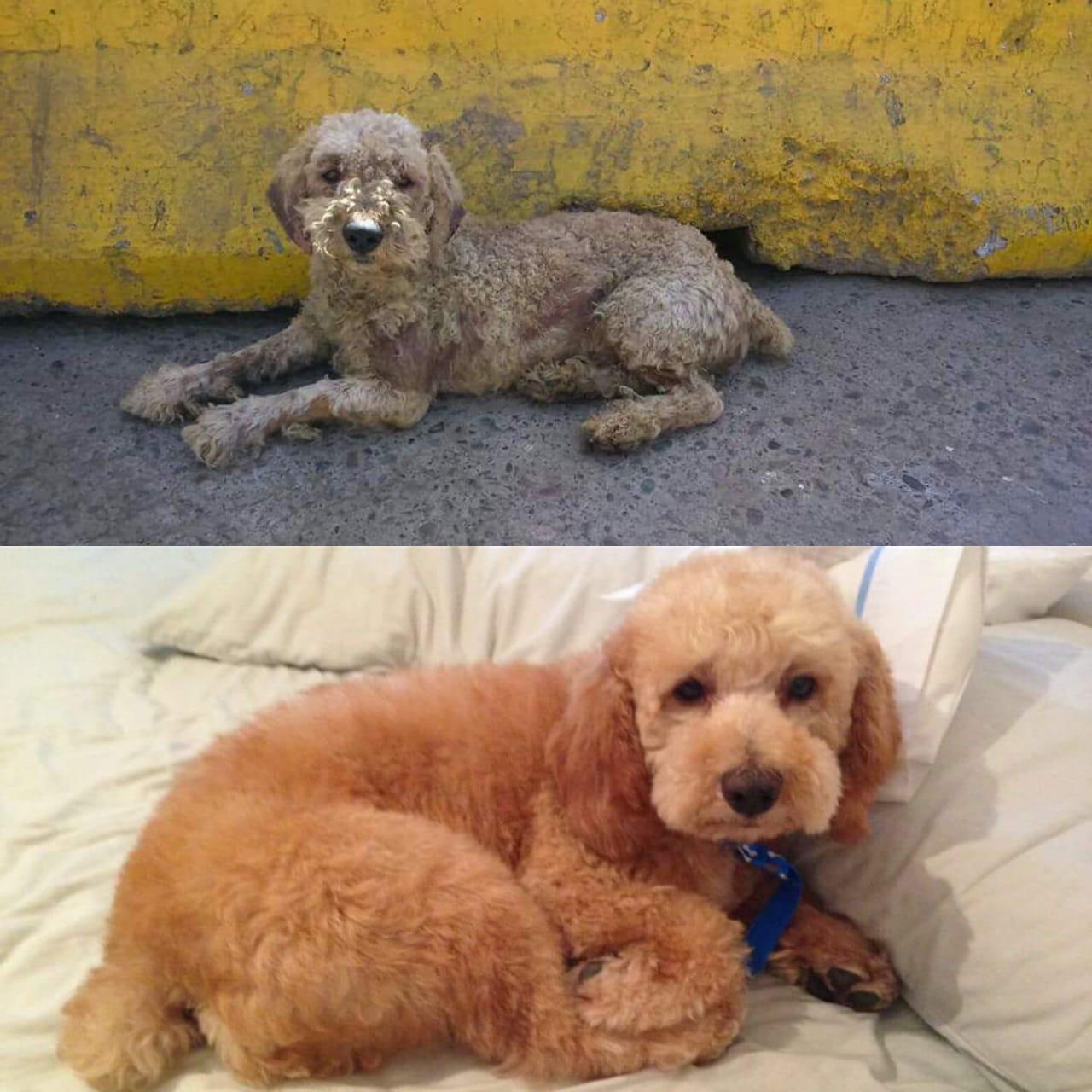 Antes y después | David Fernández