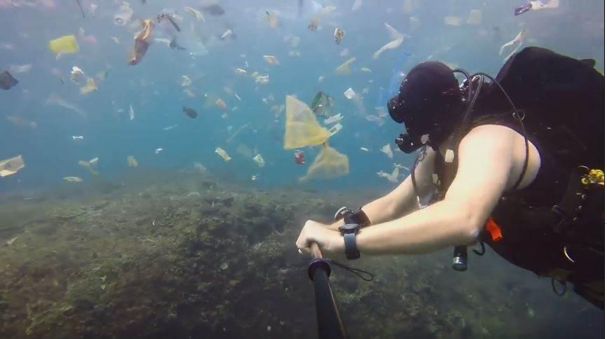 Captura | Plástico en arrecife de coral