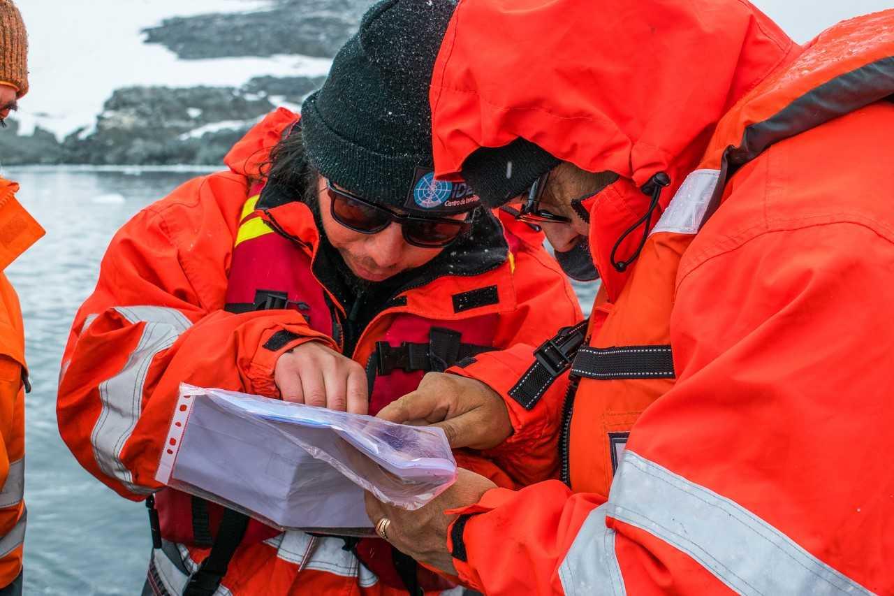 Primer sistema de monitoreo instalado por científicos del Centro IDEAL en bahía Sur, isla Doumer, península Antártica