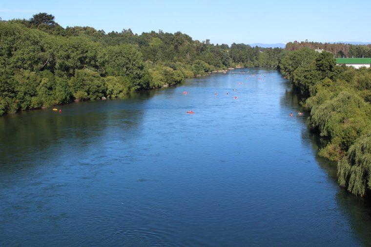 Rio San Pedro sin Represas | Facebook