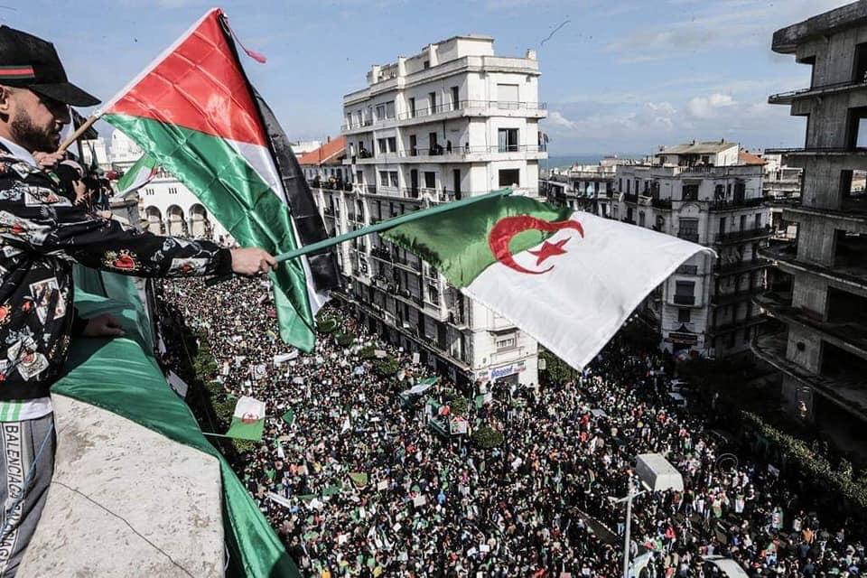 Ariel Ulloa / Whatsapp / Argelia