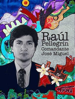 Raúl Pellegrin, Cine Normandie (c)