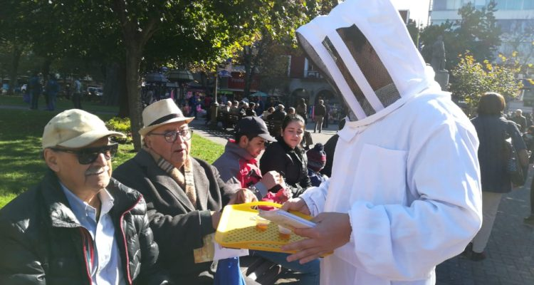 Degustación de miel en Concepción | Valeska Belmar | RBB