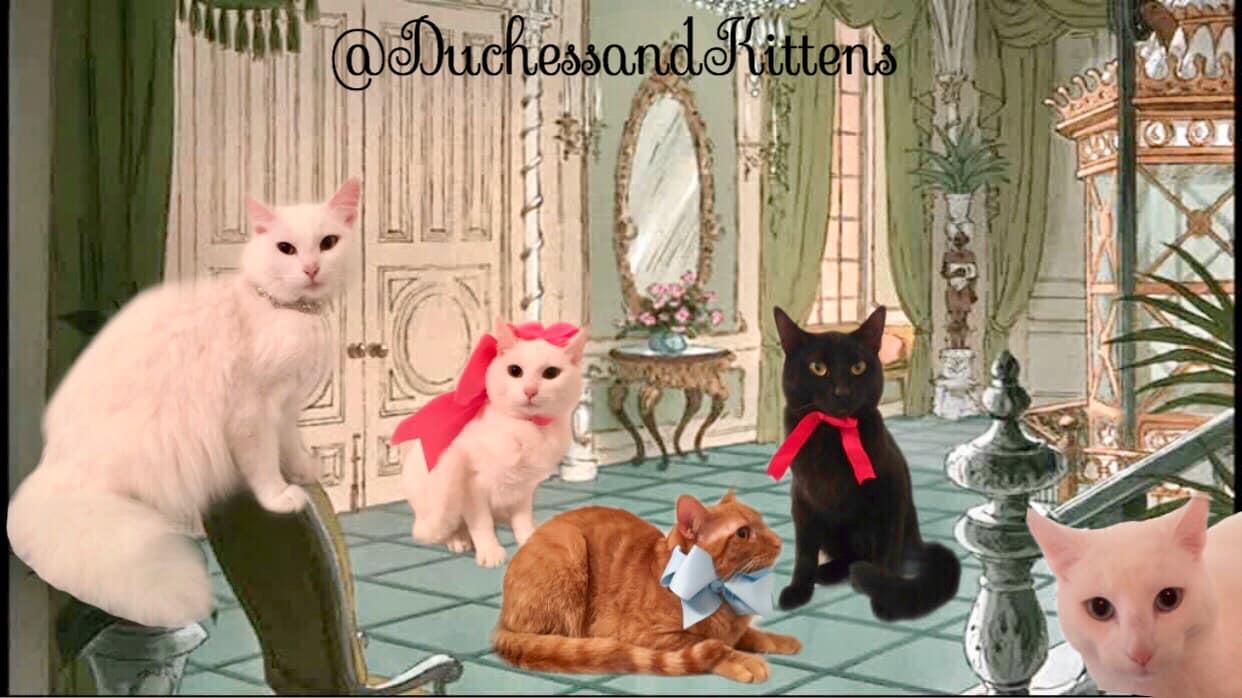 Beriloz | Duchess And Kittens
