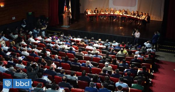 Alcaldes de Temuco y Padre Las Casas se suman a Consulta Nacional por idea de una nueva Constitución - BioBioChile