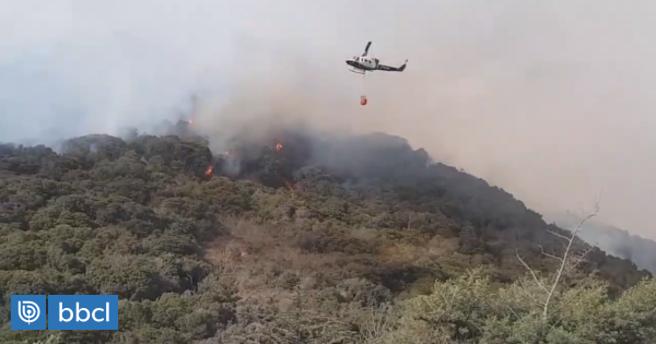 Incendio forestal consume 17 hectáreas en Cachagua en la región de Valparaíso - BioBioChile
