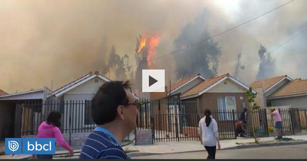 Incendios en Ovalle obligaron a decretar alerta roja en la comuna: 3 hectáreas afectadas - BioBioChile