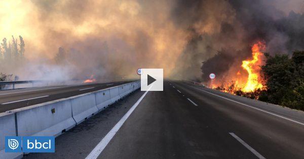 Declaran Alerta Roja para Valparaíso y Casablanca por incendios forestales: 400 hectáreas consumidas - BioBioChile