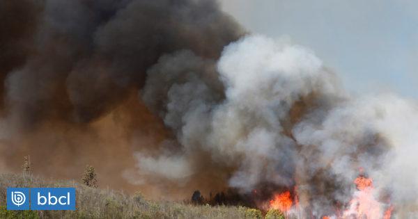 """Carabineros confirma dos detenidos por incendios en Valparaíso: """"Fueron sorprendidos haciendo focos"""" - BioBioChile"""