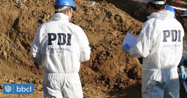 Trabajadores encuentran osamentas en terreno en Santa Bárbara: investigan si son de humano o animal - BioBioChile