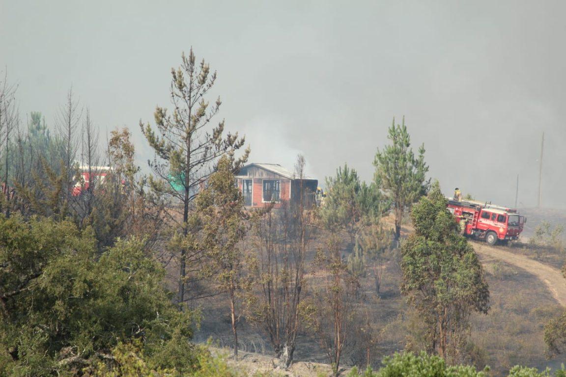 Incendio en Nacimiento | Gobernación Provincial de Bío Bío