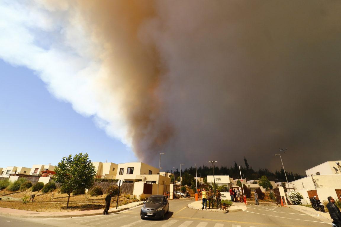 Curauma es un sector que ha sido especialmente golpeado por los incendios forestales en los últimos años | Agencia UNO