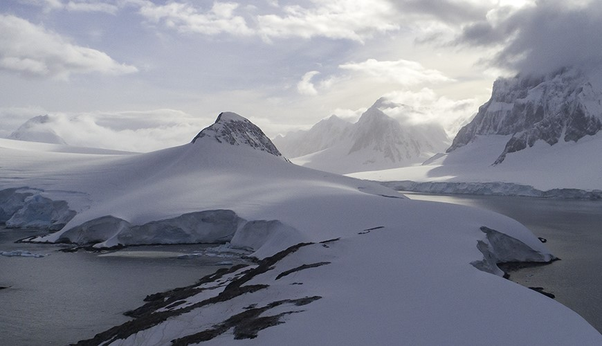 Centro de Investigación: Dinámica de Ecosistemas Marinos de Altas Latitudes - IDEAL