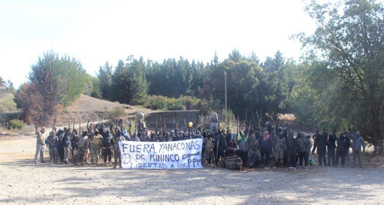 Resistencia Mapuche Lavkenche