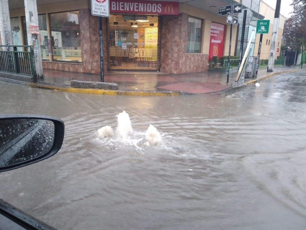 Gran Avenida con Locarno,  paradero 18. (Foto: Sebastián Velásquez | RBB)