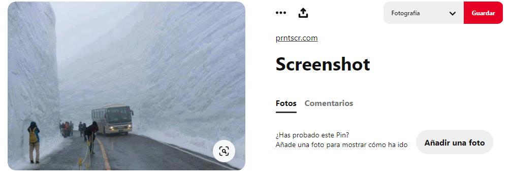 pino-hachado3