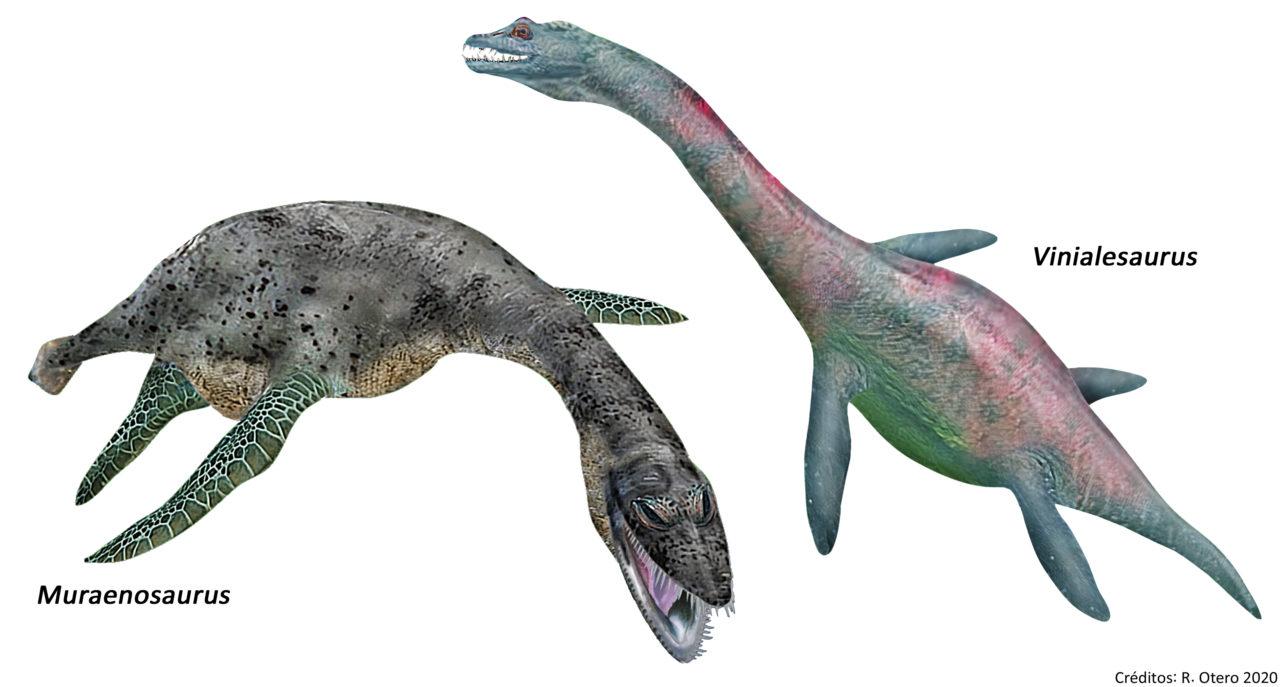 plesiosaurios-calama