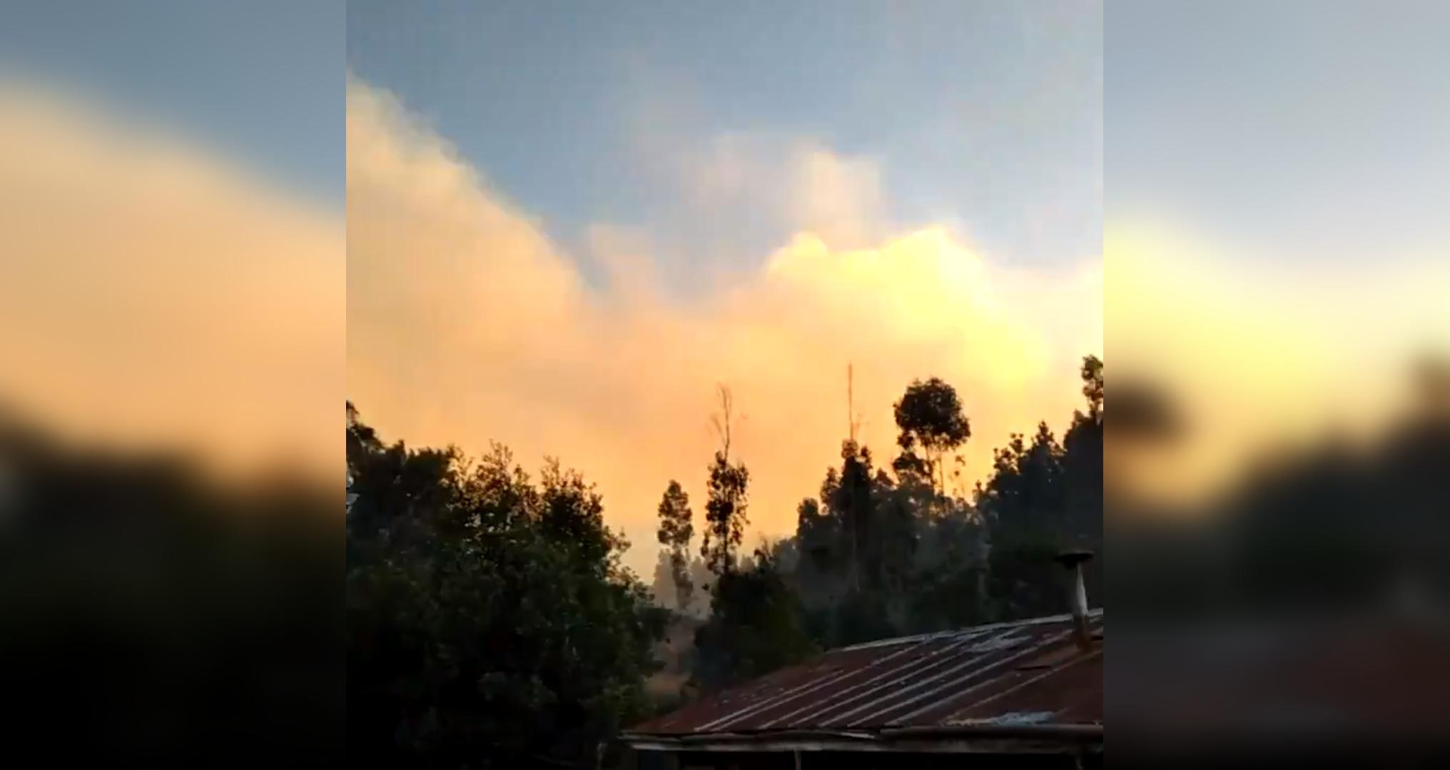 incendio-forestal-islarey2.jpg