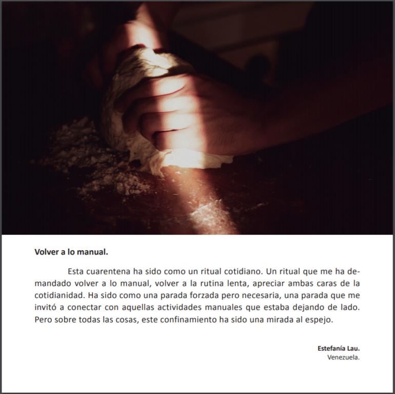 Asociación de fotógrafos de Concepción lanzan fotolibro