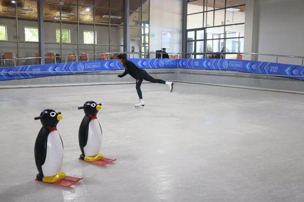 Pista de patinaje en hielo: los detalles del millonario proyecto que no prosperó en Osorno