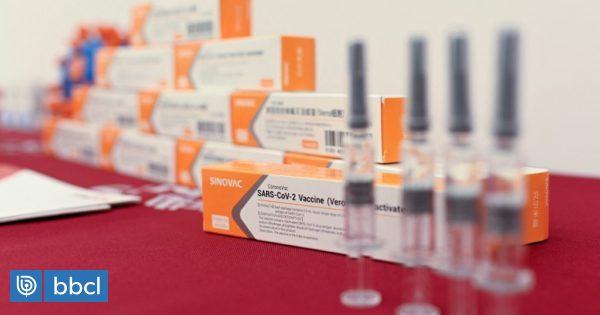 www.biobiochile.cl