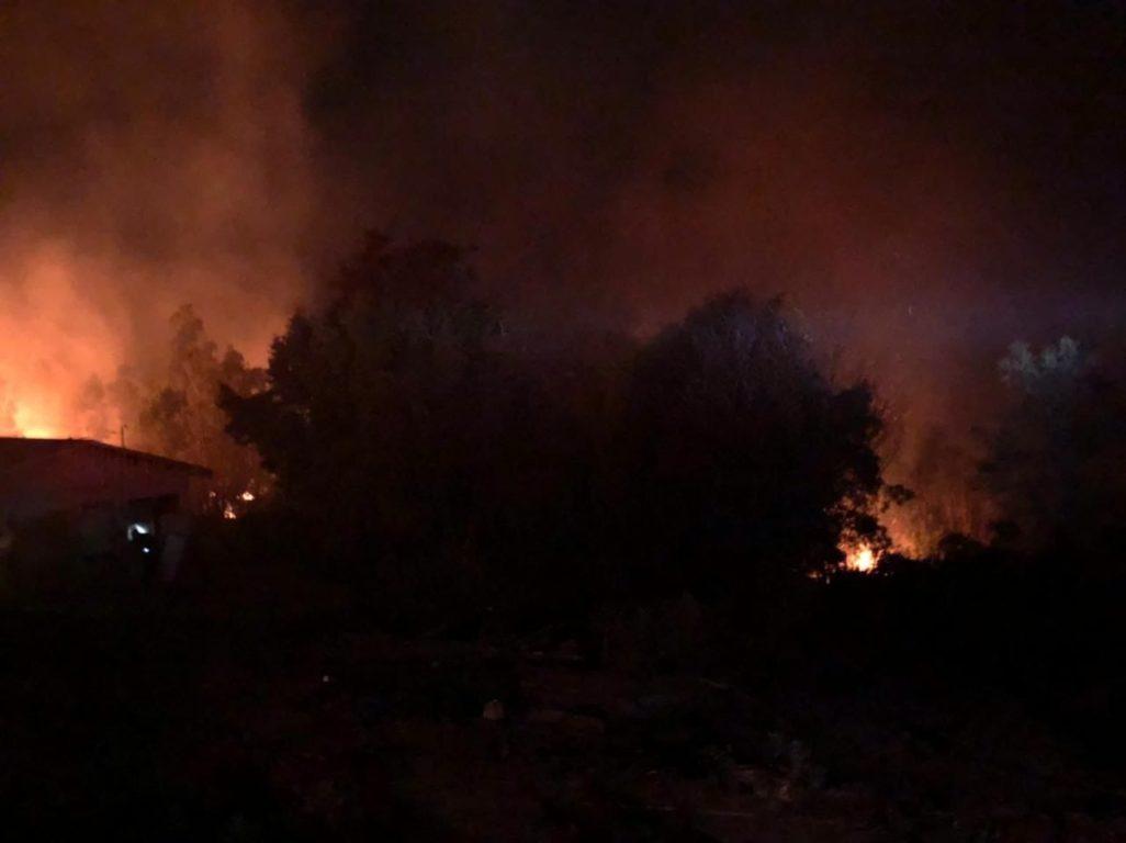 Se registra incendio forestal en la comuna de Penco: foco estaría cerca de una vivienda