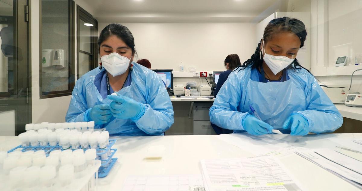 Análisis muestras PCR covid