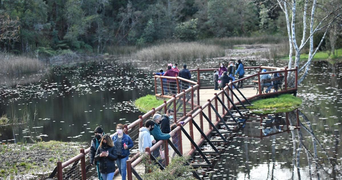 Parque Saval de Valdivia