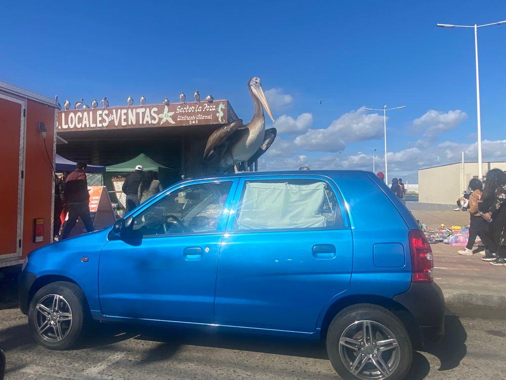 pelicano-auto-talcahuano